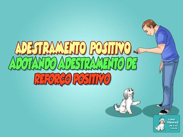 Adestramento Positivo