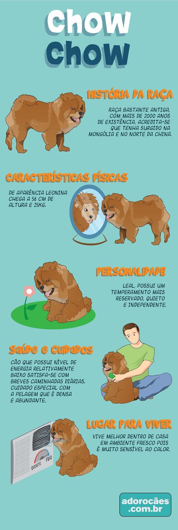 Chow Chow infografico