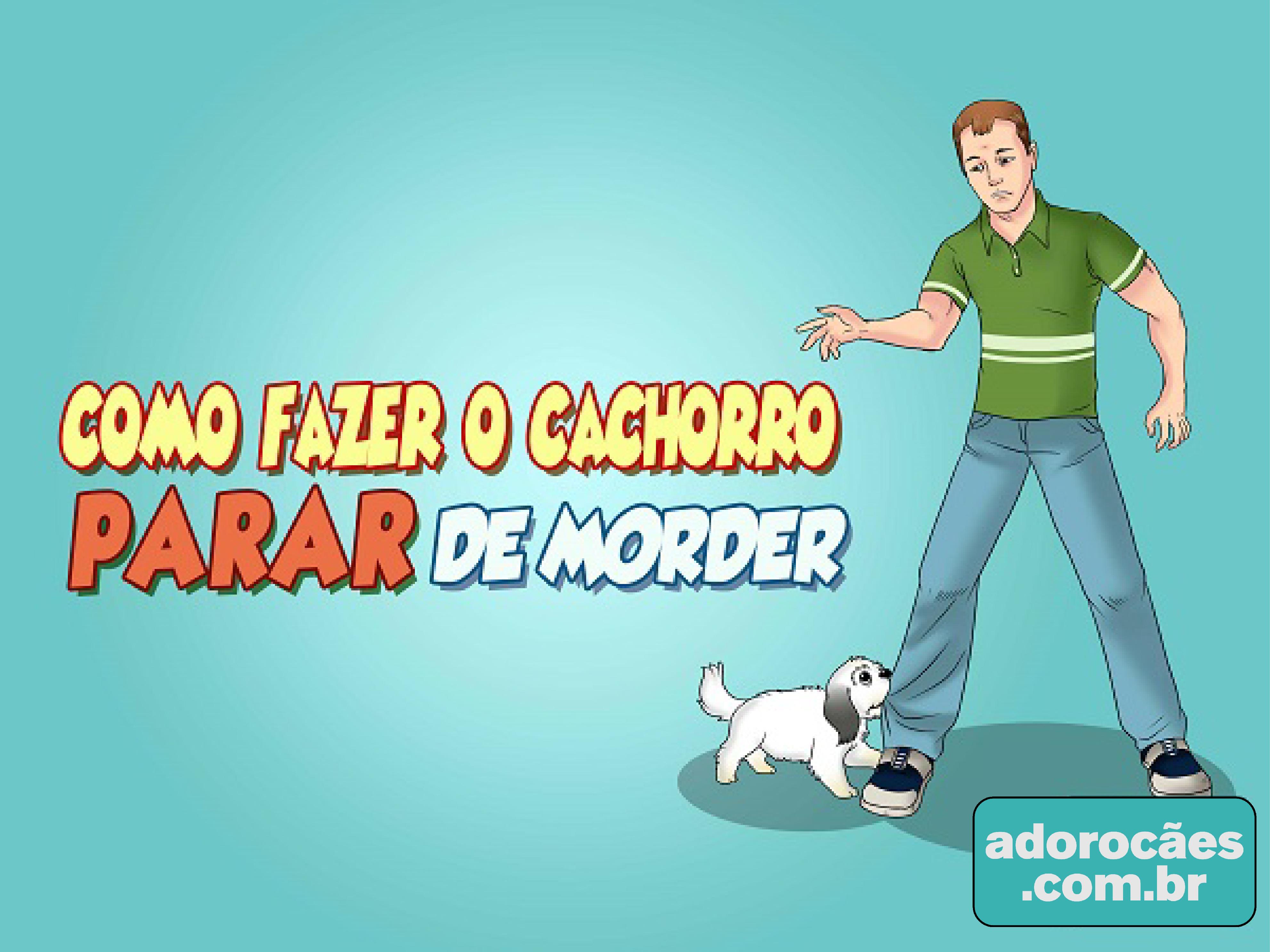 Como Fazer o Cachorro Parar de Morder