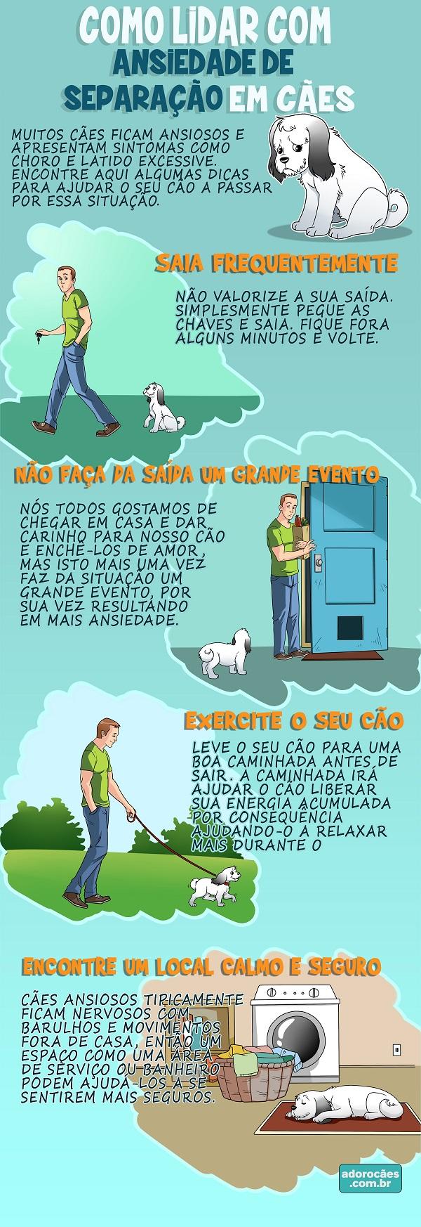 Como-Lidar-com-Ansiedade-de-Separação-em-Cães---Infografico