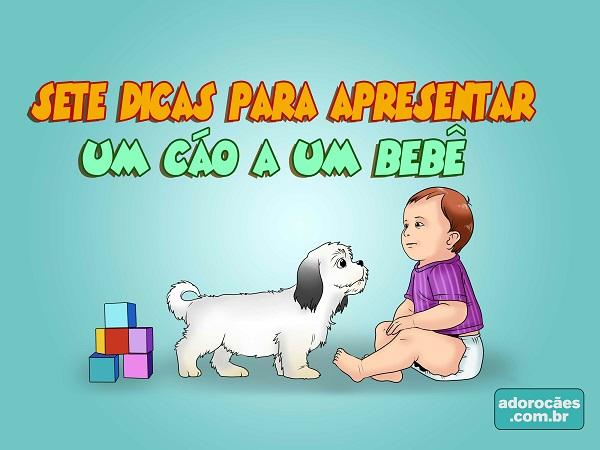 Dicas-para-Apresentar-um-Cão-a-um-Bebê