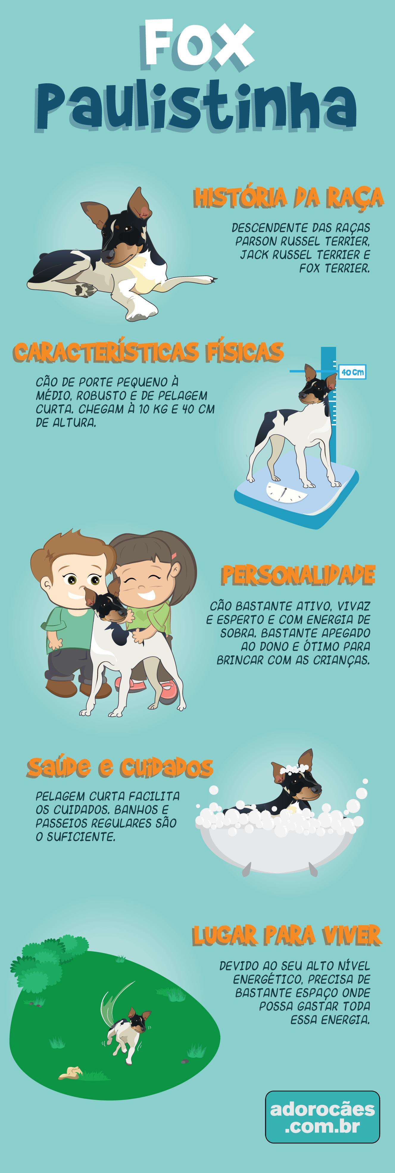 Fox Paulistinha infografico