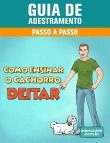 Guia de Adestramento - Como Ensinar o Cachorro Deitar