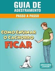 Guia de Adestramento - Como Ensinar o Cachorro Ficar