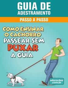 Guia de Adestramento - Como Ensinar o Cachorro Passear Sem Puxar a Guia