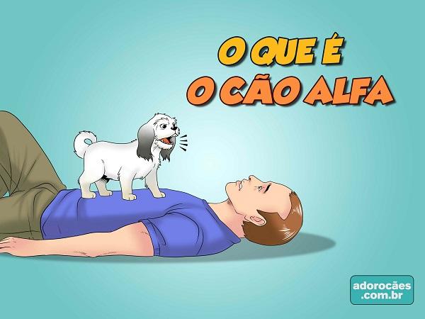 O-que-é-o-cão-alfa