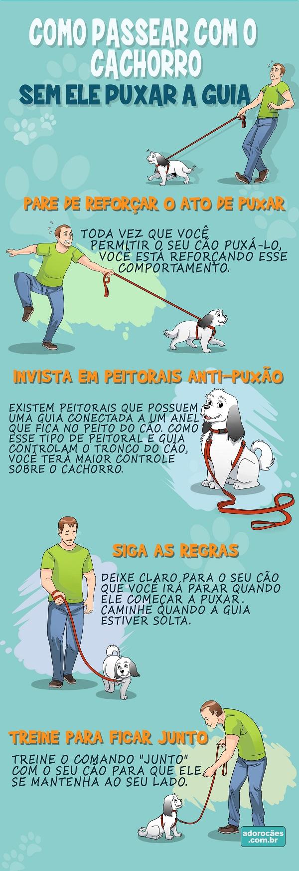 como-passear-com-o-cachorro-sem-ele-puxar-a-guia-infografico