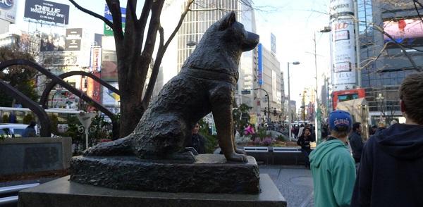A história do cachorro Hachiko